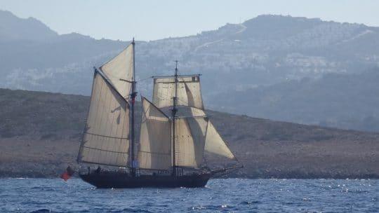 Johanna Lucretia at full mast