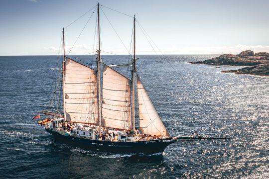 Blue Clipper half sails