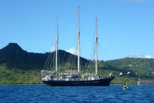 Blue-clipper