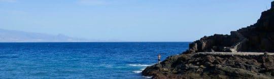 Canaries Cove