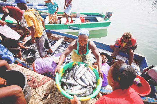 Cape Verde Oosterschelde