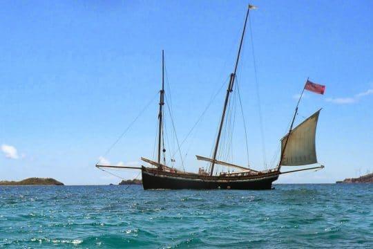 Grayhound on anchor