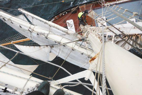 Lady of Avenel mast view