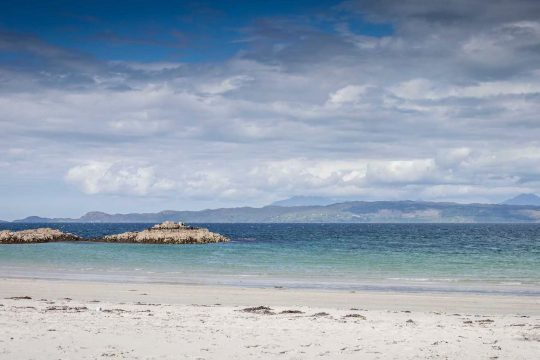 Narwhal Arisaig Scotland