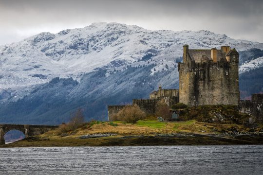 Narwhal Scotland Castle