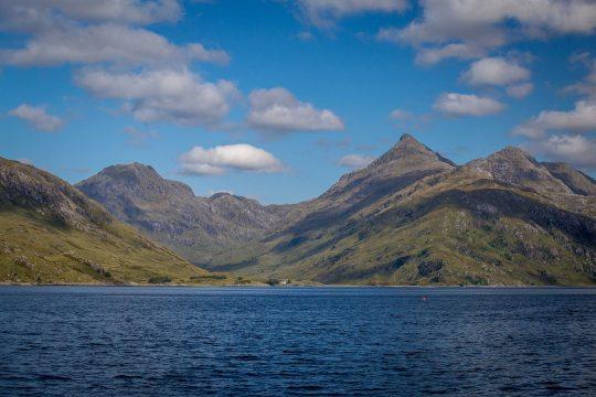 Narwhal Scotland Skye