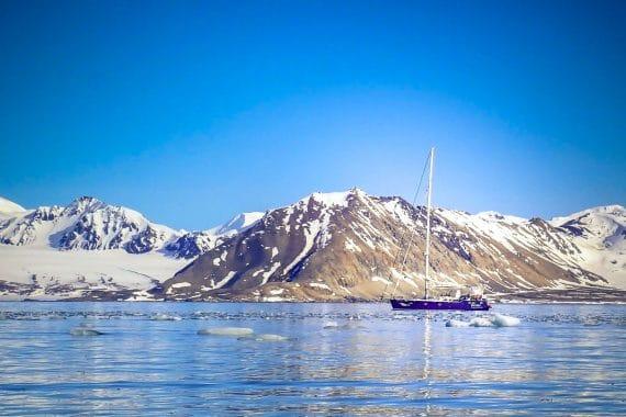 Narwhal arctic sailing