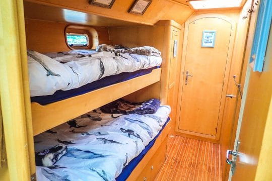 Narwhal bunks