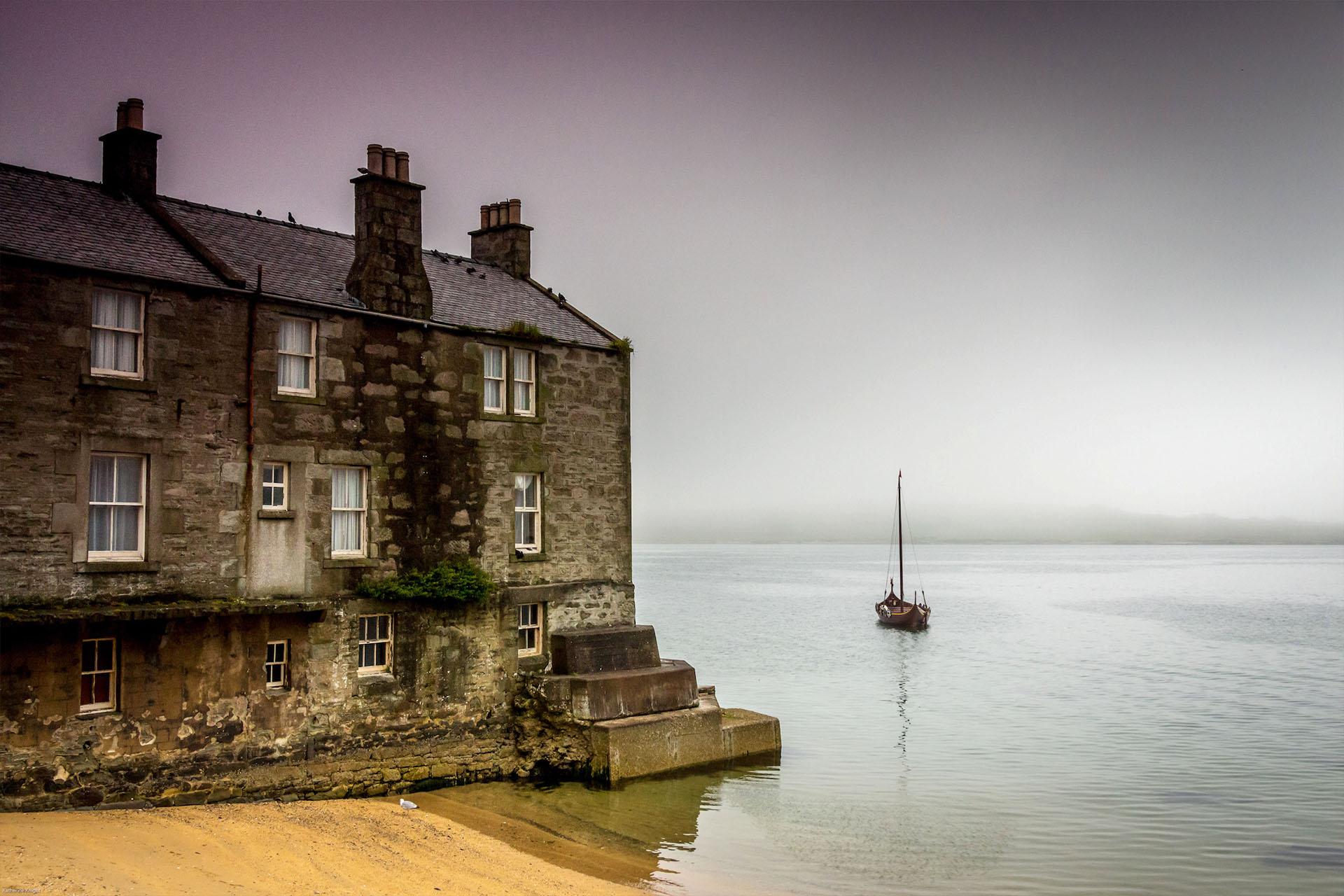 Narwhal shetlands Scotland