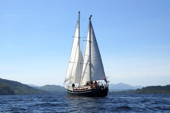 Steady Full Sail