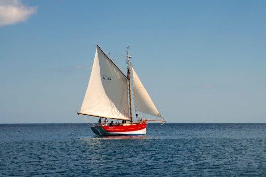 Pettifox sailing