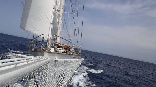 Rhea bow sailing