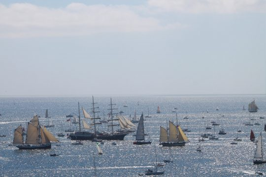 Tall Ships Race Falmouth bay