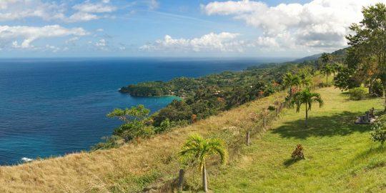 sailing holidays Tobago-island-Castara-bay