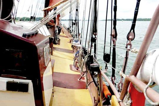 Trinovante on decks