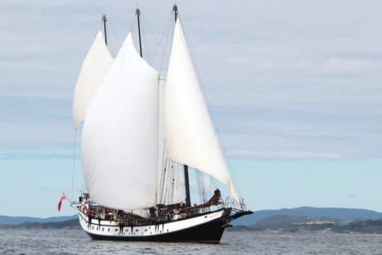 Trinovante under full sails