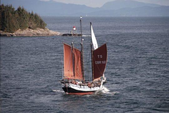 Trinovante under sail stern