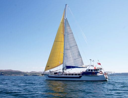 Easter Wildlife and Sailing in the Hebrides