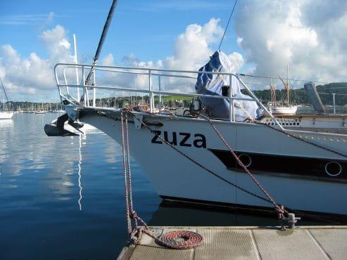 Zuza in Falmouth